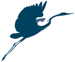Blue Heron Web Design